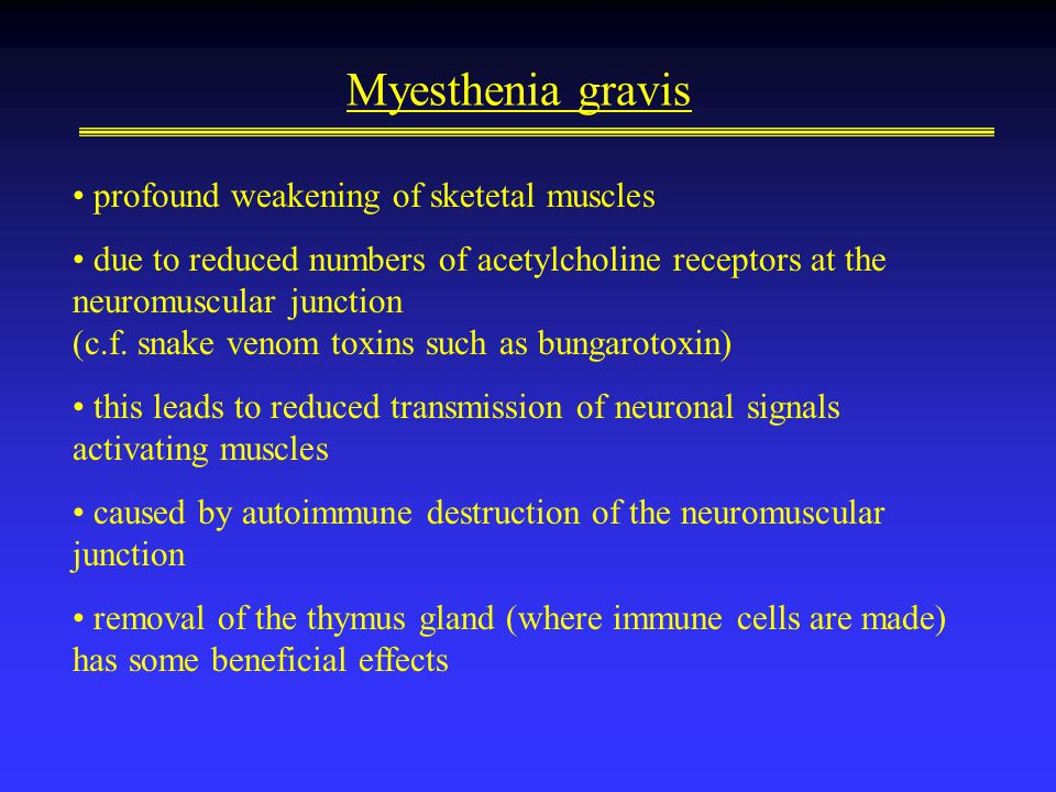 Myesthenia gravis profound weakening of sketetal muscles due to reduced numbers of acetylcholine receptors at the neuromuscular junction (c.f.