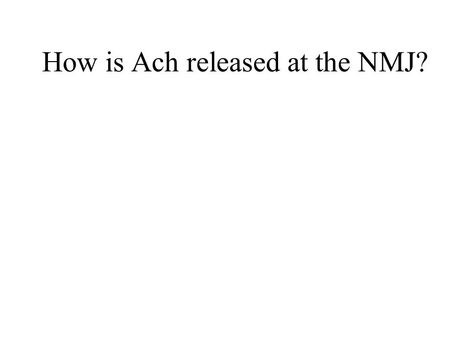 How is Ach released at the NMJ?
