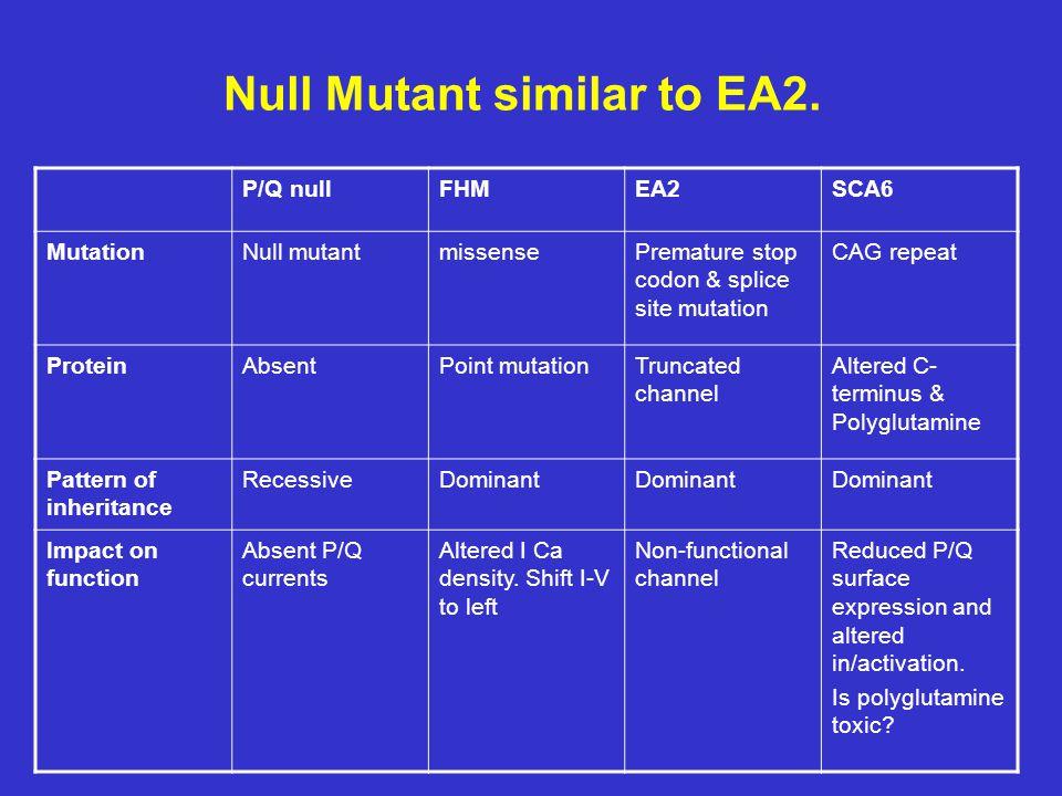 Null Mutant similar to EA2.