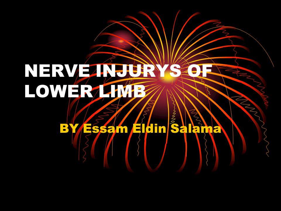 NERVE INJURYS OF LOWER LIMB BY Essam Eldin Salama