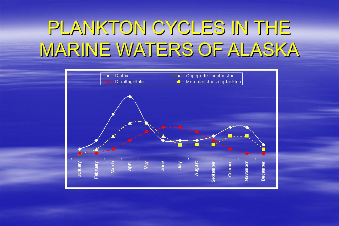 PLANKTON CYCLES IN THE MARINE WATERS OF ALASKA PLANKTON CYCLES IN THE MARINE WATERS OF ALASKA