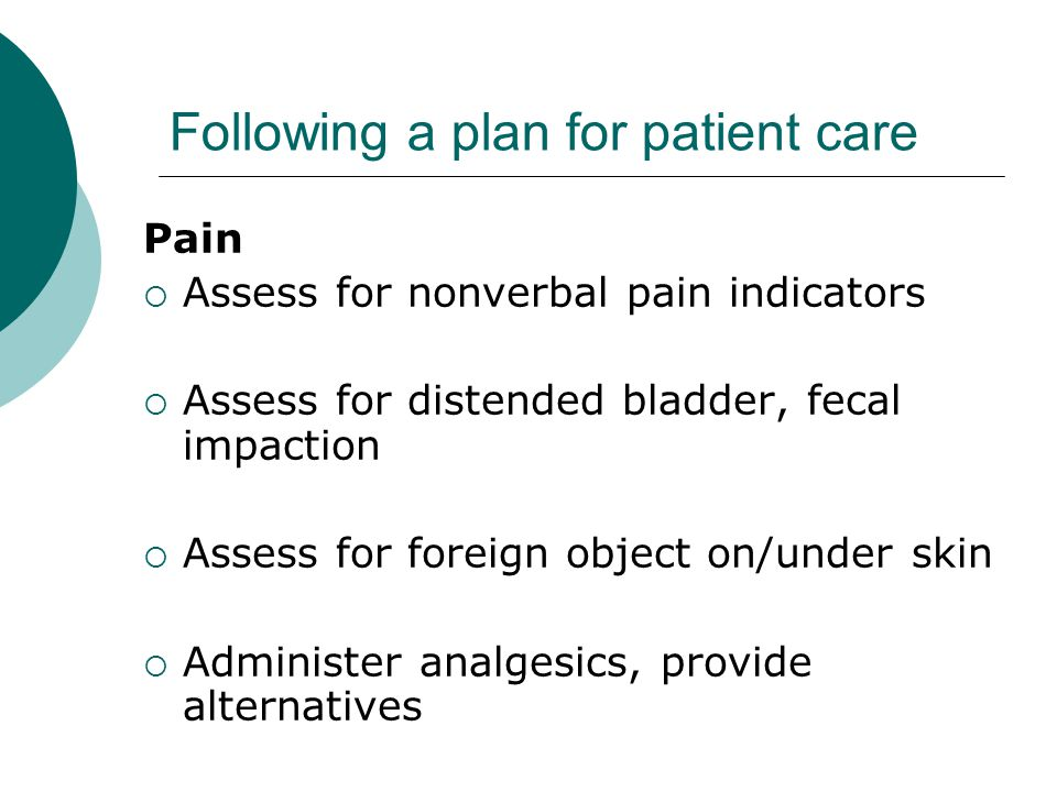 Following a plan for patient care Pain  Assess for nonverbal pain indicators  Assess for distended bladder, fecal impaction  Assess for foreign object on/under skin  Administer analgesics, provide alternatives