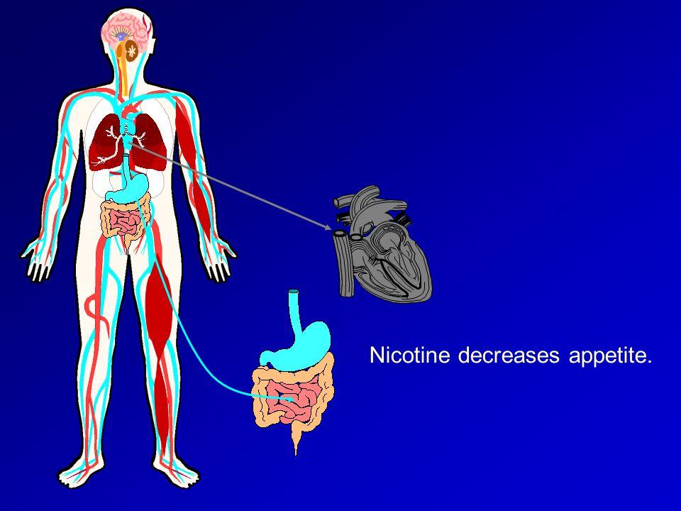 Nicotine decreases appetite.
