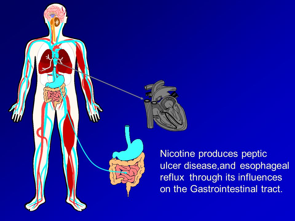 Nicotine produces peptic ulcer disease,and esophageal reflux through its influences on the Gastrointestinal tract.