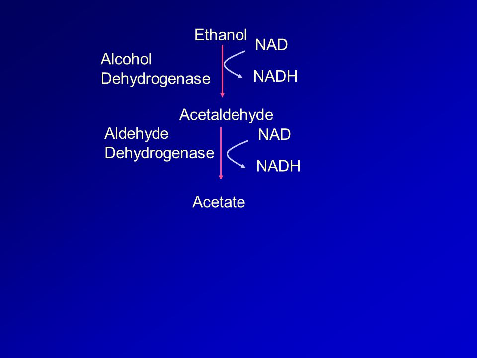 Ethanol Acetaldehyde Acetate NAD NADH NAD NADH Alcohol Dehydrogenase Aldehyde Dehydrogenase