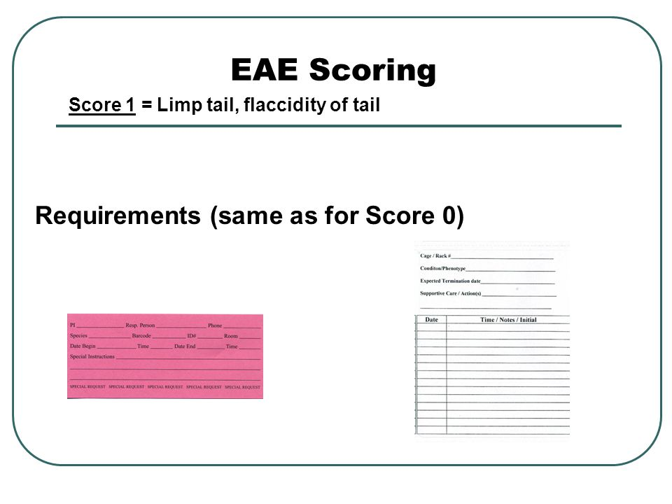 EAE Scoring Requirements (same as for Score 0) Score 1 = Limp tail, flaccidity of tail