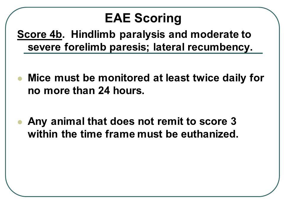 EAE Scoring Score 4b.