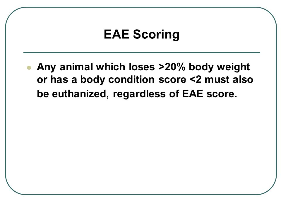 EAE Scoring Any animal which loses >20% body weight or has a body condition score <2 must also be euthanized, regardless of EAE score.