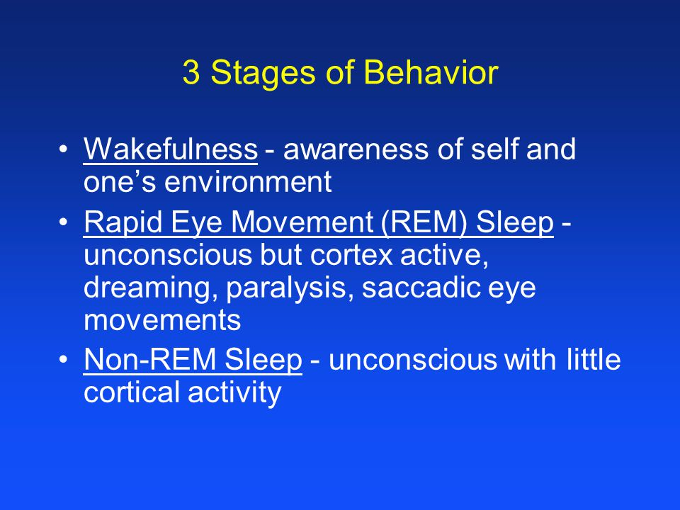 3 Stages of Behavior Wakefulness - awareness of self and one's environment Rapid Eye Movement (REM) Sleep - unconscious but cortex active, dreaming, paralysis, saccadic eye movements Non-REM Sleep - unconscious with little cortical activity