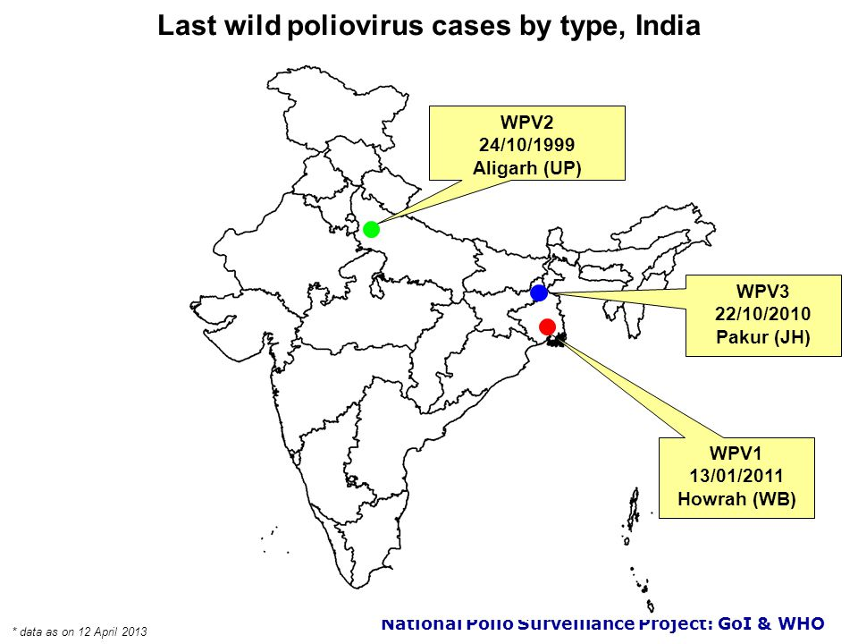 National Polio Surveillance Project: GoI & WHO Location of wild poliovirus and VDPV cases by type, India 20112012 2013* * data as on 12 April 2013