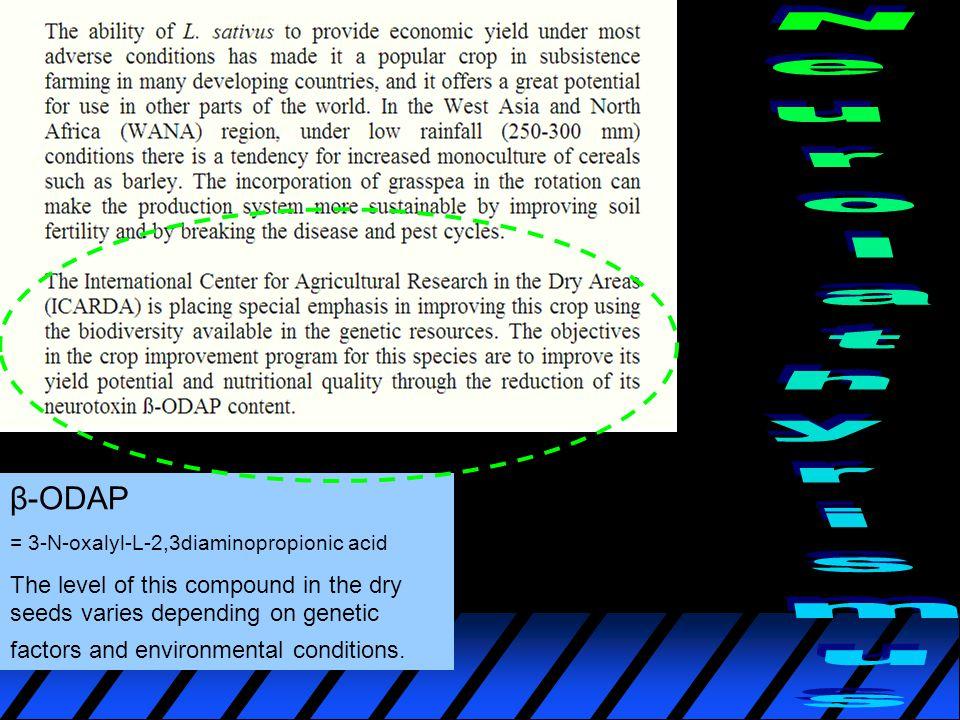 β-ODAP = 3-N-oxalyl-L-2,3diaminopropionic acid The level of this compound in the dry seeds varies depending on genetic factors and environmental conditions.