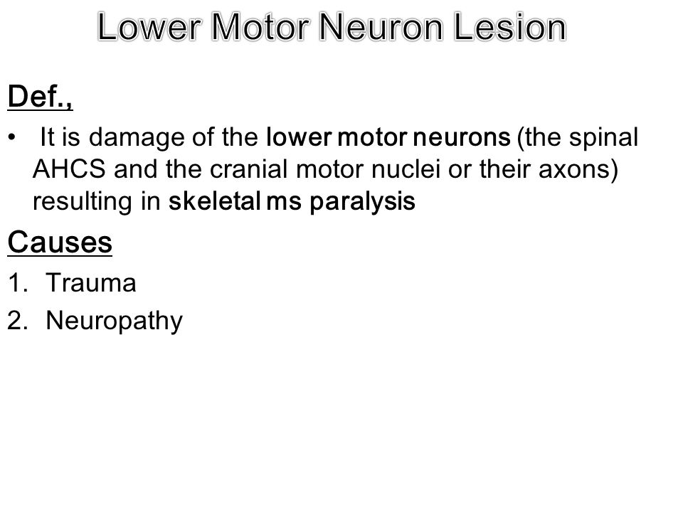 Def., It is damage of the lower motor neurons (the spinal AHCS and the cranial motor nuclei or their axons) resulting in skeletal ms paralysis Causes 1.Trauma 2.Neuropathy