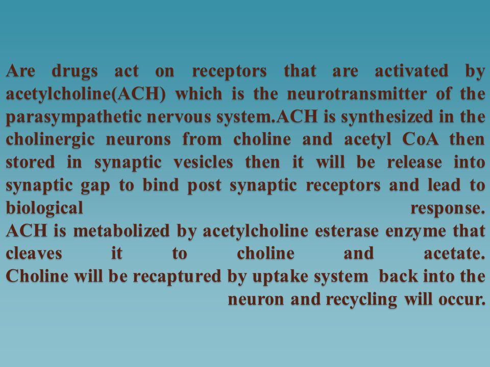 Pyridostigmine: Used in chronic treatment of myasthenia gravis, its duration of action 3-6 hours.