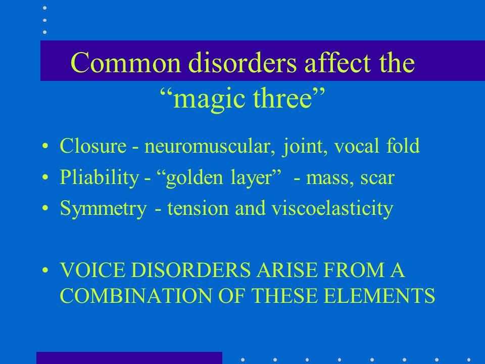 Vocal Cord Inflammatory Diseases Reflux Laryngopharyngitis (LPR) Arytenoid Granuloma