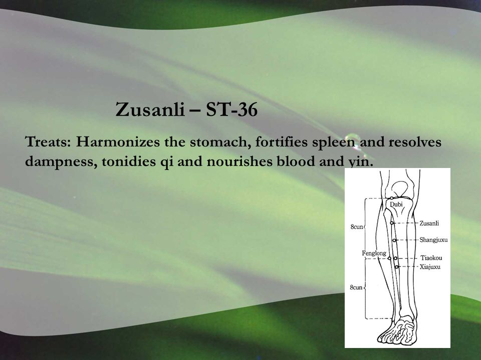 Zusanli – ST-36 Treats: Harmonizes the stomach, fortifies spleen and resolves dampness, tonidies qi and nourishes blood and yin.