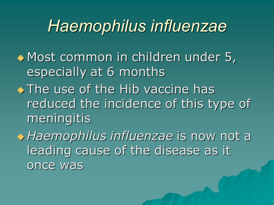 Haemophilus influenzae  Most common in children under 5, especially at 6 months  The use of the Hib vaccine has reduced the incidence of this type of meningitis  Haemophilus influenzae is now not a leading cause of the disease as it once was