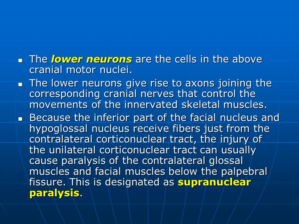 The lower neurons are the cells in the above cranial motor nuclei.