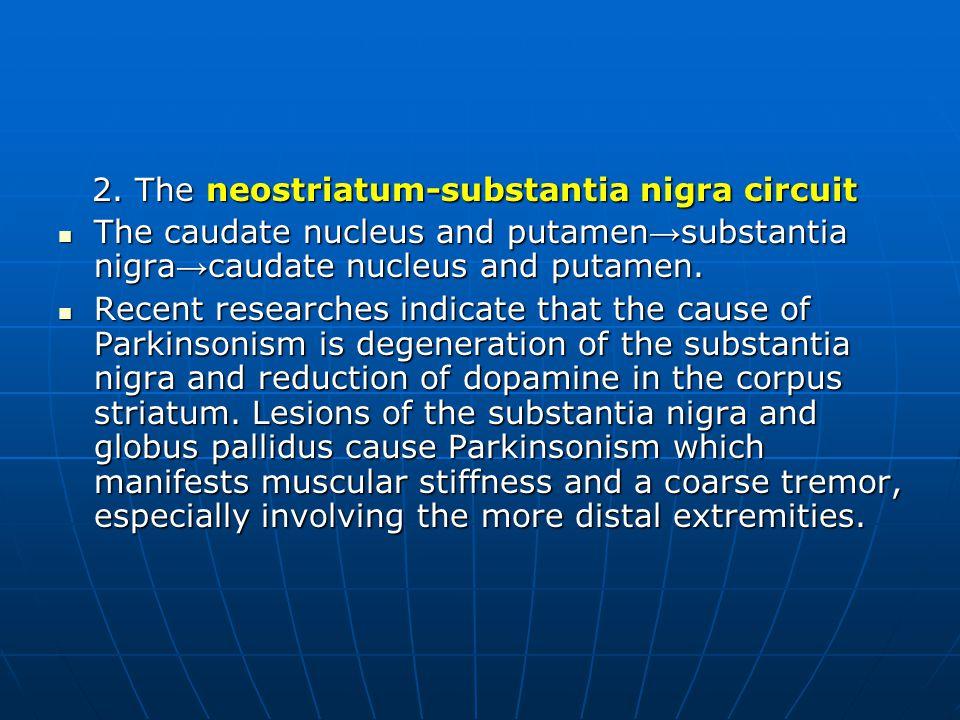 2. The neostriatum-substantia nigra circuit 2.
