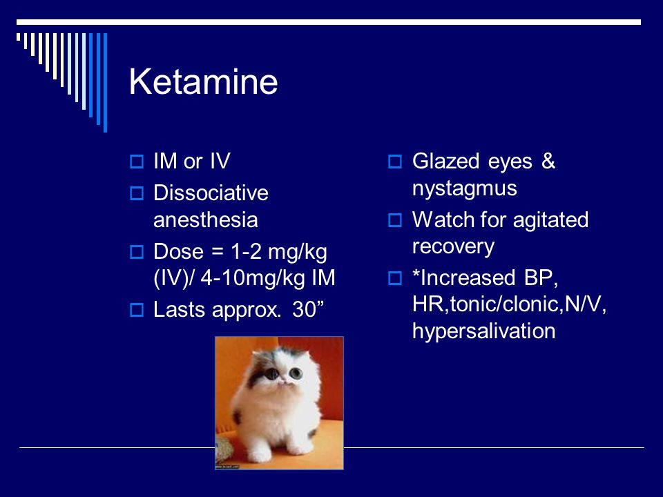 Ketamine  IM or IV  Dissociative anesthesia  Dose = 1-2 mg/kg (IV)/ 4-10mg/kg IM  Lasts approx.