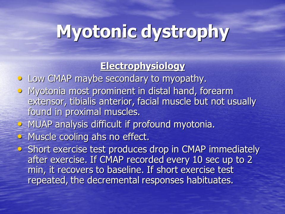 Myotonic dystrophy Electrophysiology Low CMAP maybe secondary to myopathy. Low CMAP maybe secondary to myopathy. Myotonia most prominent in distal han