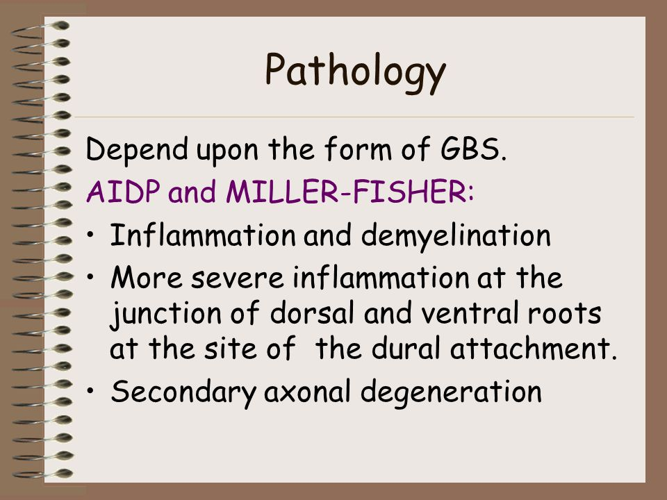 Pathology Depend upon the form of GBS.