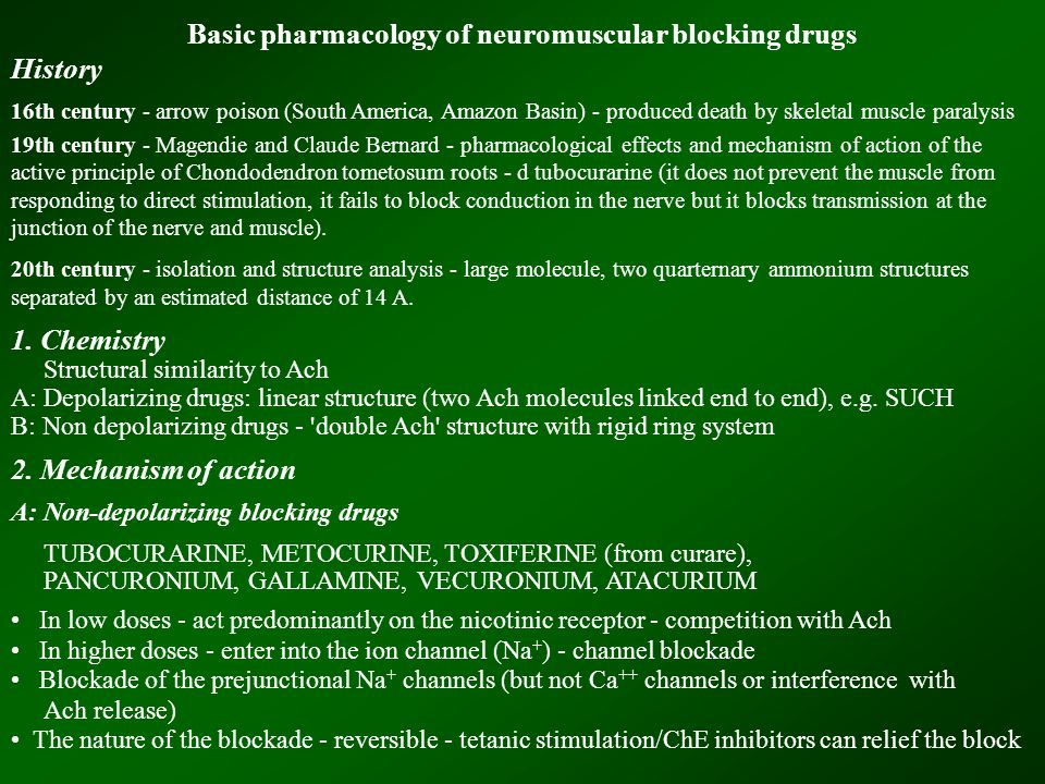 Basic pharmacology of neuromuscular blocking drugs History 16th century - arrow poison (South America, Amazon Basin) - produced death by skeletal muscle paralysis 19th century - Magendie and Claude Bernard - pharmacological effects and mechanism of action of the active principle of Chondodendron tometosum roots - d tubocurarine (it does not prevent the muscle from responding to direct stimulation, it fails to block conduction in the nerve but it blocks transmission at the junction of the nerve and muscle).