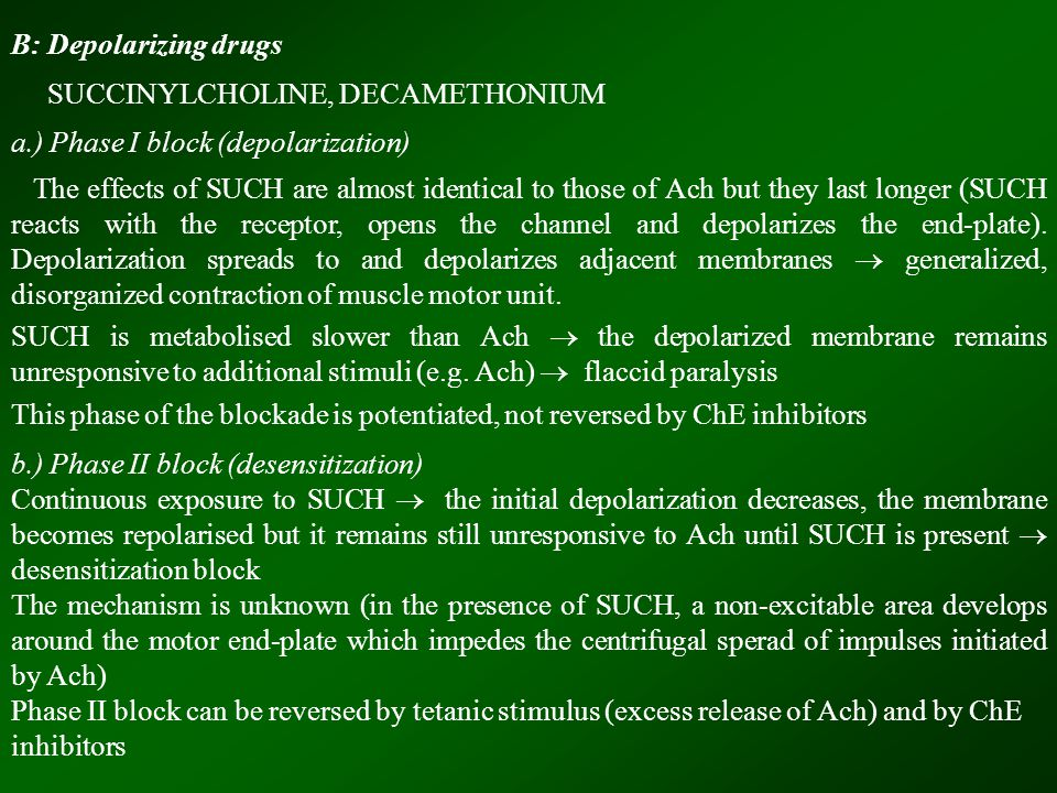 B: Depolarizing drugs SUCCINYLCHOLINE, DECAMETHONIUM a.) Phase I block (depolarization) The effects of SUCH are almost identical to those of Ach but they last longer (SUCH reacts with the receptor, opens the channel and depolarizes the end-plate).