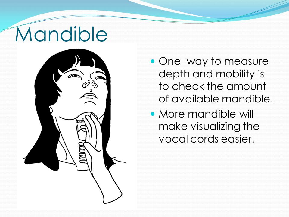 Mandible One way to measure depth and mobility is to check the amount of available mandible.