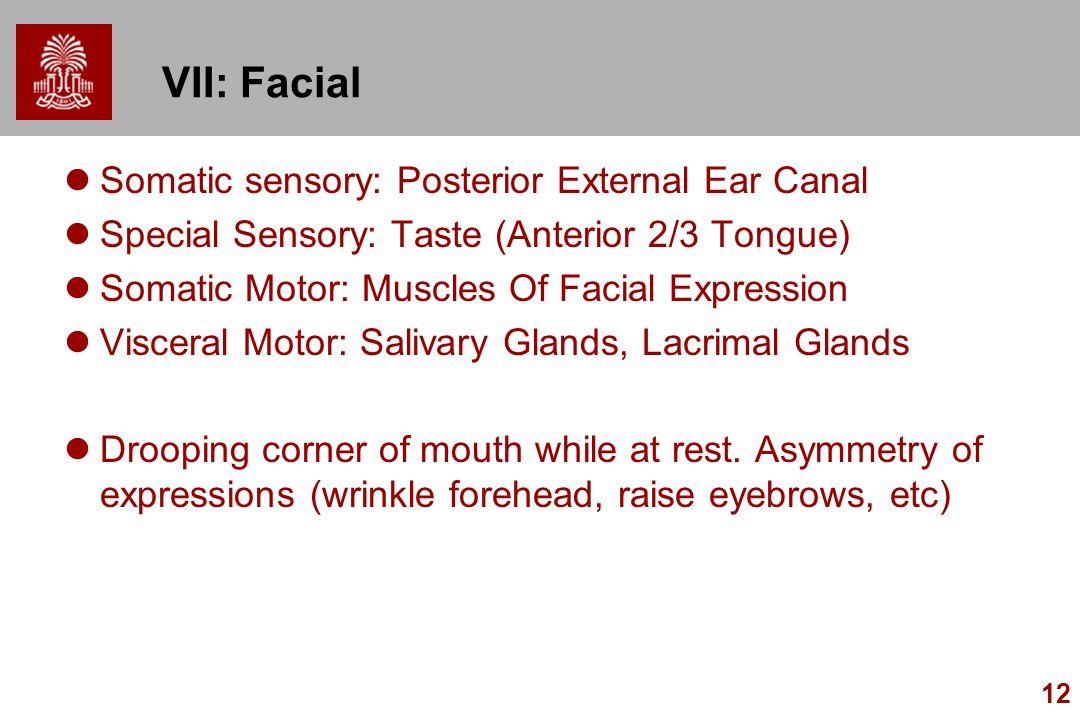 12 VII: Facial Somatic sensory: Posterior External Ear Canal Special Sensory: Taste (Anterior 2/3 Tongue) Somatic Motor: Muscles Of Facial Expression