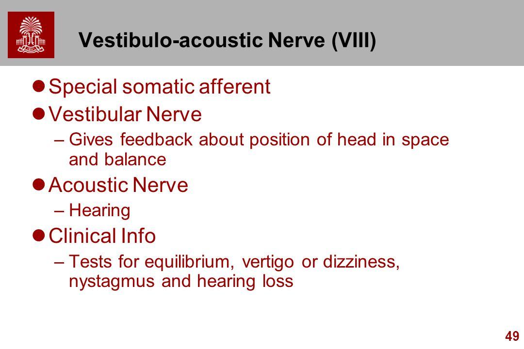 49 Vestibulo-acoustic Nerve (VIII) Special somatic afferent Vestibular Nerve –Gives feedback about position of head in space and balance Acoustic Nerv