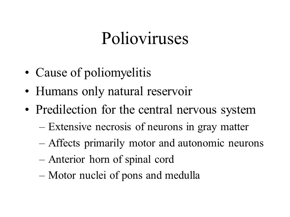 Polioviruses Cause of poliomyelitis Humans only natural reservoir Predilection for the central nervous system –Extensive necrosis of neurons in gray matter –Affects primarily motor and autonomic neurons –Anterior horn of spinal cord –Motor nuclei of pons and medulla