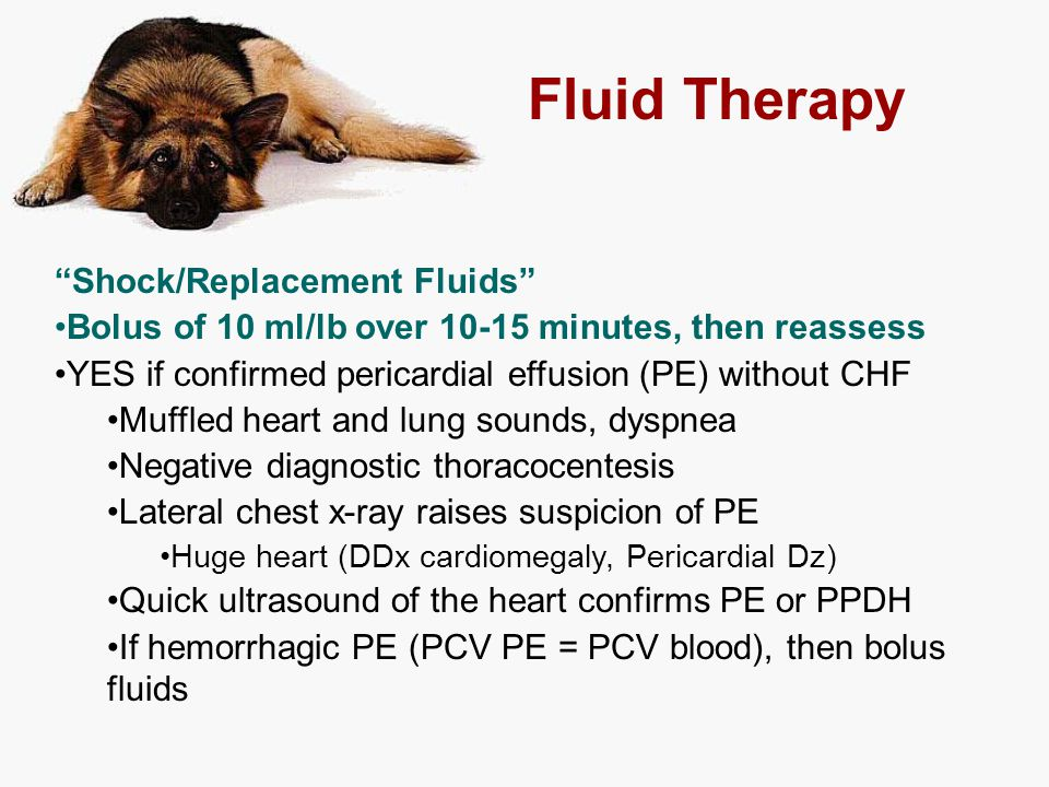 "Fluid Therapy ""Shock/Replacement Fluids"" Bolus of 10 ml/lb over 10-15 minutes, then reassess YES if confirmed pericardial effusion (PE) without CHF Mu"
