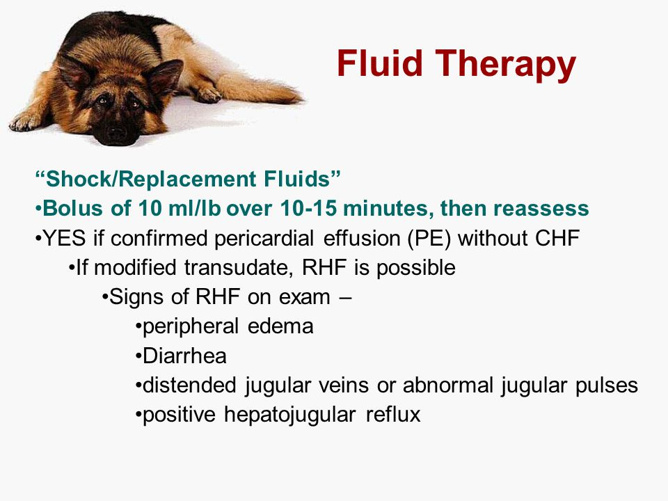"Fluid Therapy ""Shock/Replacement Fluids"" Bolus of 10 ml/lb over 10-15 minutes, then reassess YES if confirmed pericardial effusion (PE) without CHF If"