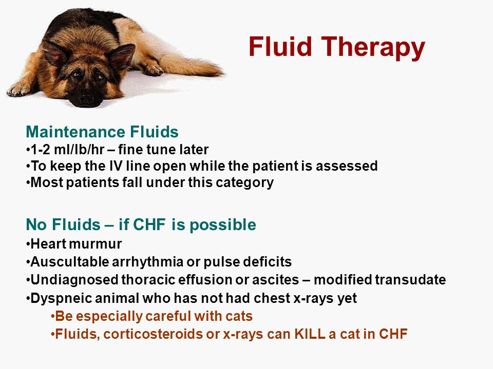 Maintenance Fluids 1-2 ml/lb/hr – fine tune later To keep the IV line open while the patient is assessed Most patients fall under this category No Flu