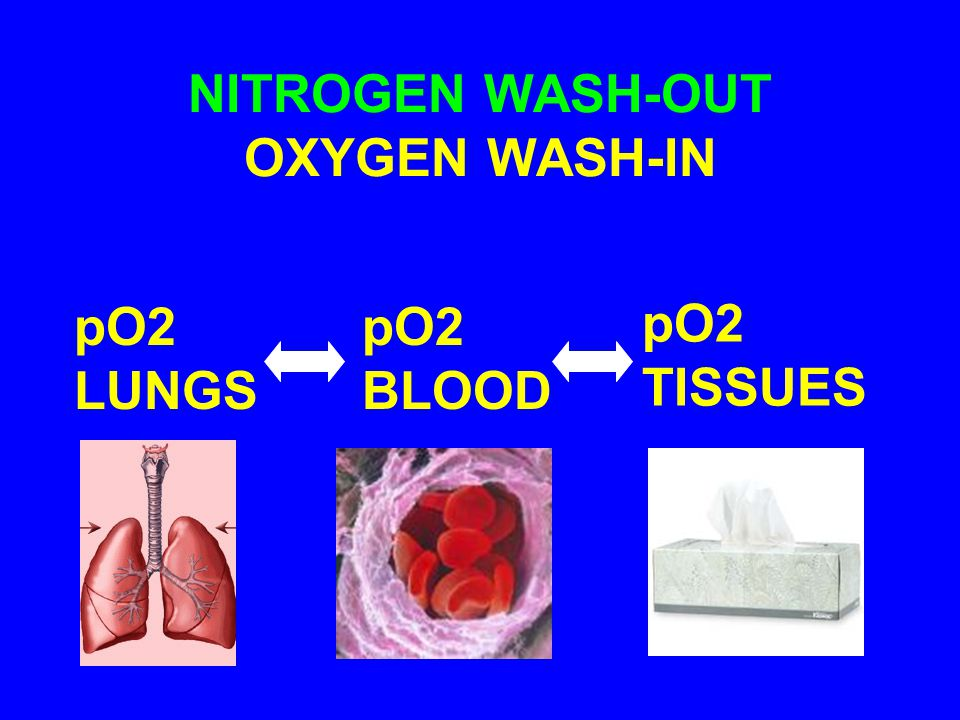 NITROGEN WASH-OUT OXYGEN WASH-IN pO2 LUNGS pO2 TISSUES pO2 BLOOD