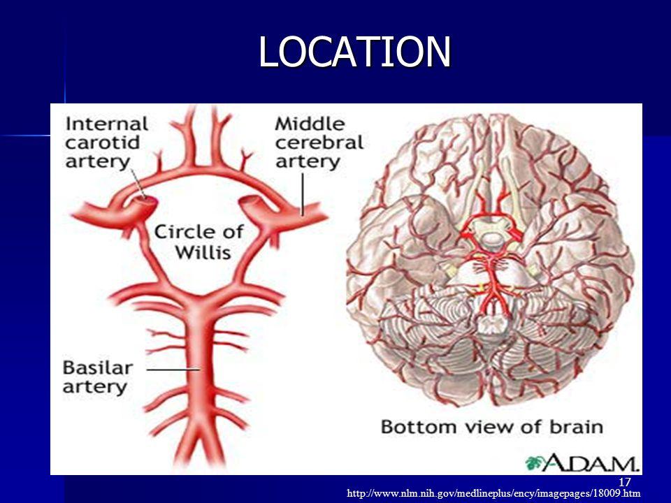 17 LOCATION http://www.nlm.nih.gov/medlineplus/ency/imagepages/18009.htm