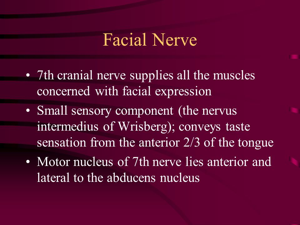 Facial Nerve 7th cranial nerve supplies all the muscles concerned with facial expression Small sensory component (the nervus intermedius of Wrisberg);