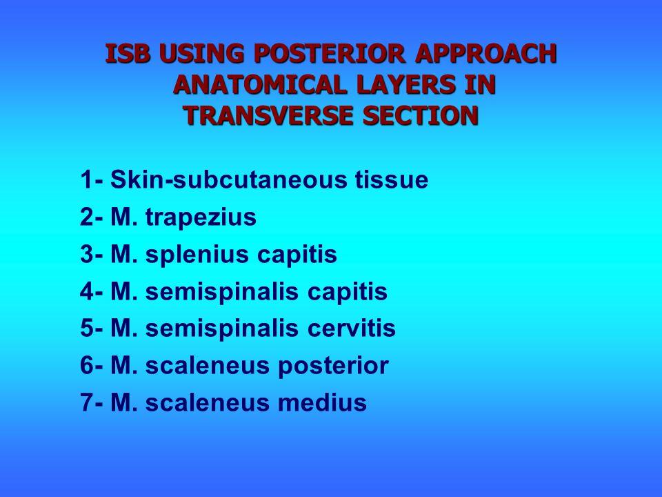1- Skin-subcutaneous tissue 2- M. trapezius 3- M.