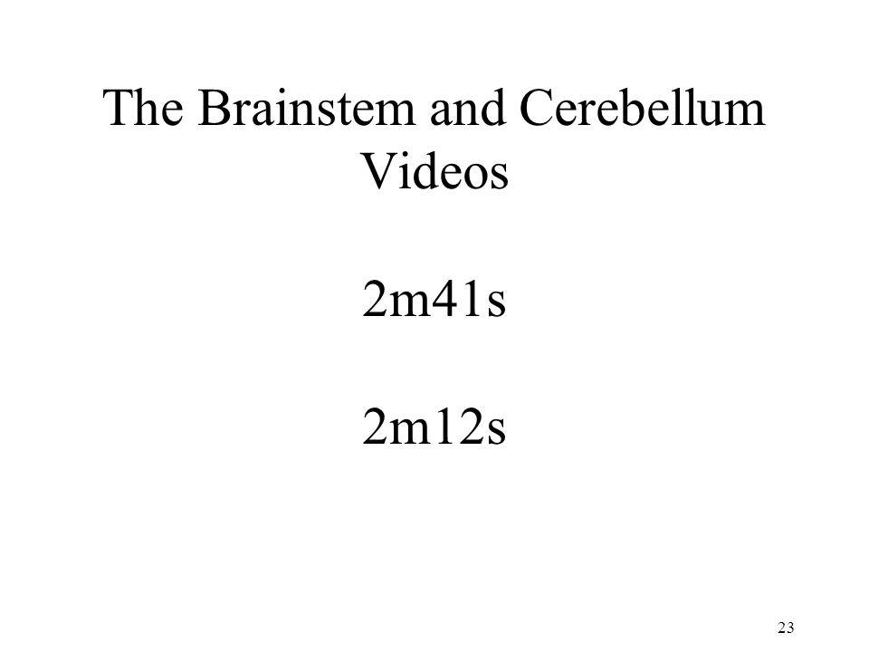 The Brainstem and Cerebellum Videos 2m41s 2m12s 23