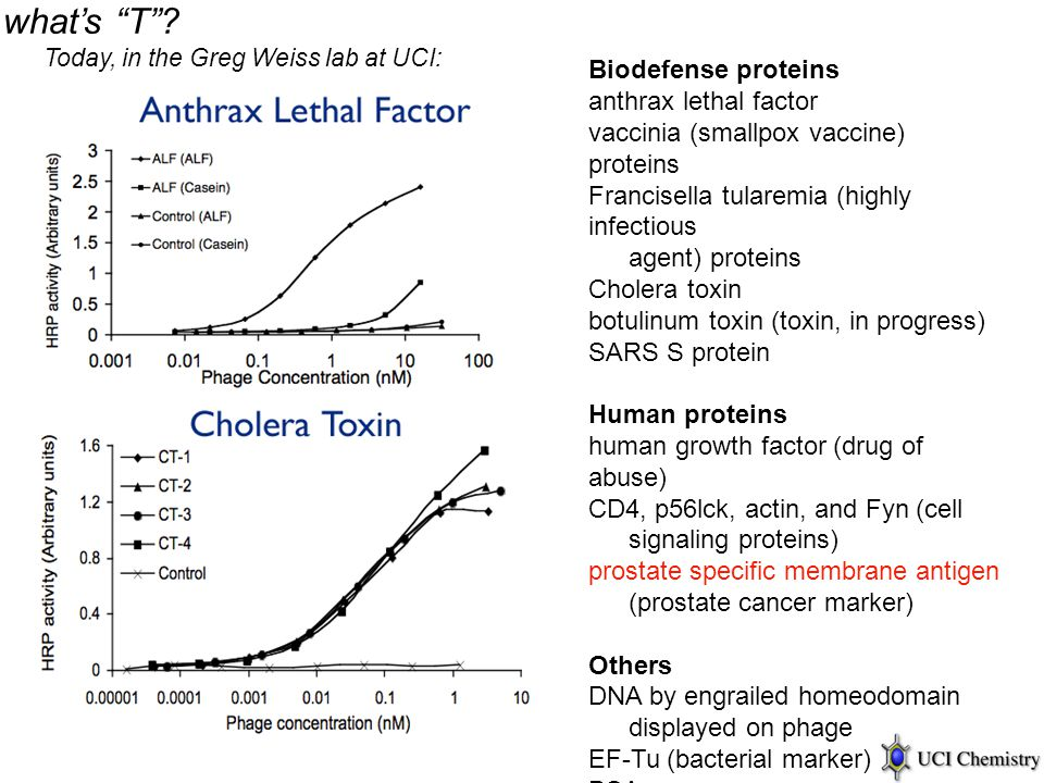 "what's ""T""? Today, in the Greg Weiss lab at UCI: Biodefense proteins anthrax lethal factor vaccinia (smallpox vaccine) proteins Francisella tularemia"