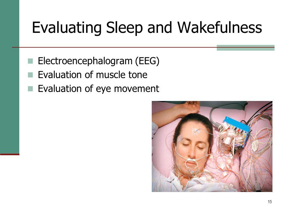 15 Evaluating Sleep and Wakefulness Electroencephalogram (EEG) Evaluation of muscle tone Evaluation of eye movement © Lester Lefkowitz/CORBIS