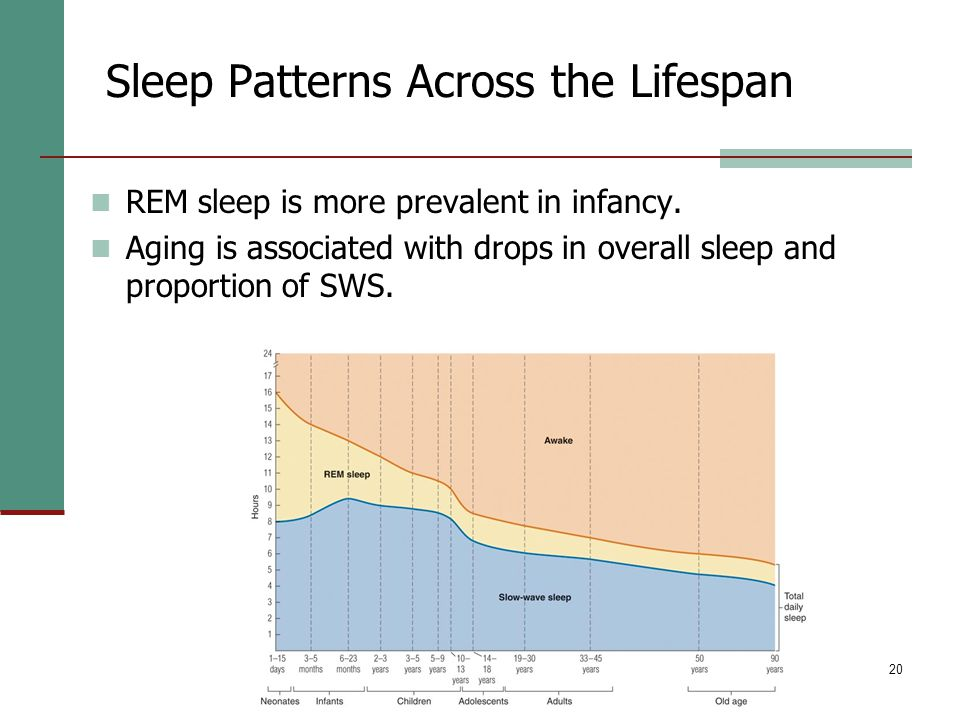 20 Sleep Patterns Across the Lifespan REM sleep is more prevalent in infancy.