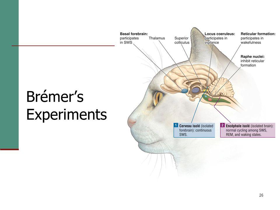 26 Brémer's Experiments