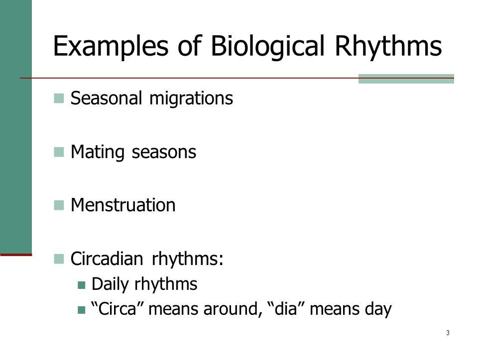 "3 Examples of Biological Rhythms Seasonal migrations Mating seasons Menstruation Circadian rhythms: Daily rhythms ""Circa"" means around, ""dia"" means da"
