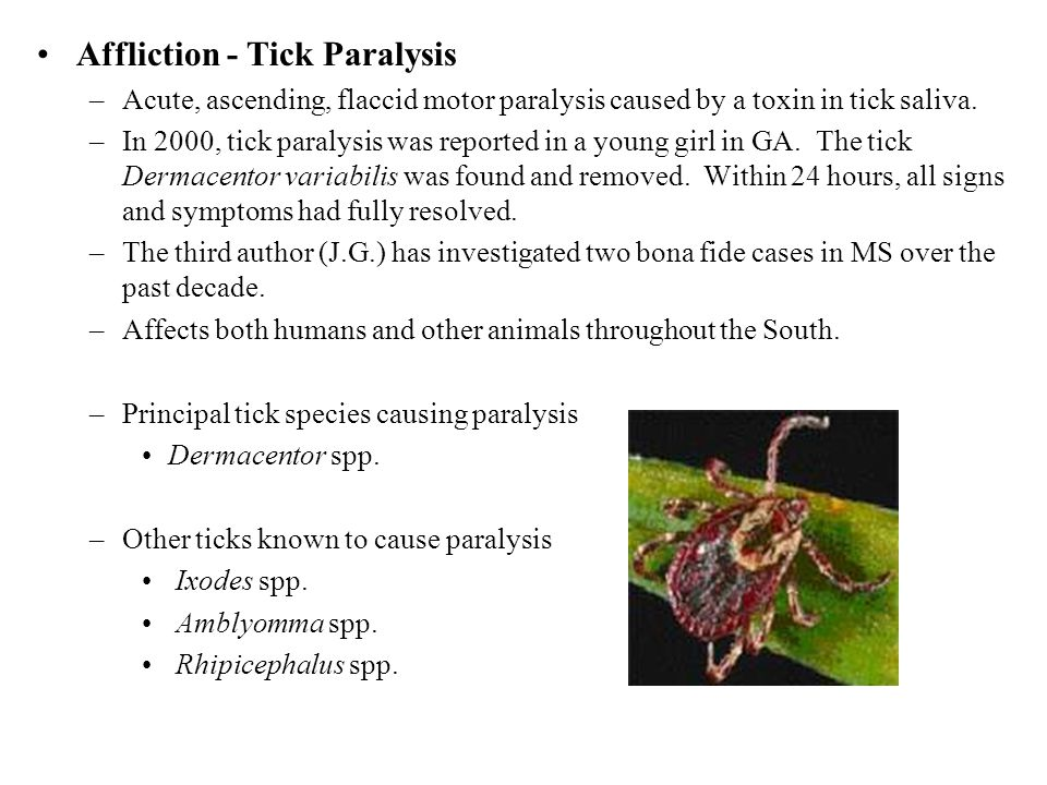 Affliction - Tick Paralysis –Acute, ascending, flaccid motor paralysis caused by a toxin in tick saliva. –In 2000, tick paralysis was reported in a yo