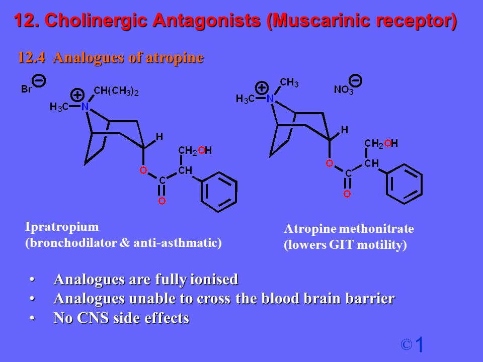 1 © 12.4 Analogues of atropine Analogues are fully ionisedAnalogues are fully ionised Analogues unable to cross the blood brain barrierAnalogues unabl