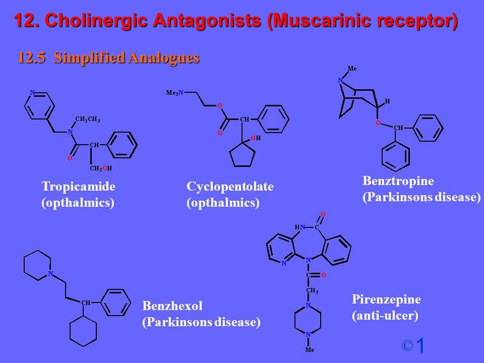 1 © 12.5 Simplified Analogues Tropicamide (opthalmics) Cyclopentolate (opthalmics) Benztropine (Parkinsons disease) Benzhexol (Parkinsons disease) Pir