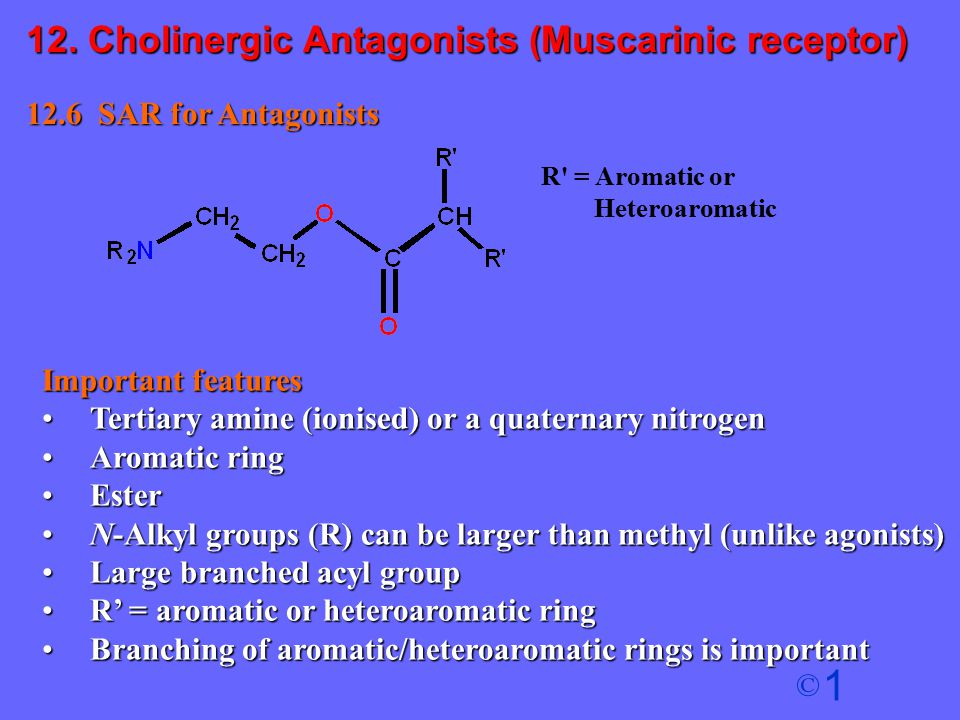 1 © 12.6 SAR for Antagonists Important features Tertiary amine (ionised) or a quaternary nitrogenTertiary amine (ionised) or a quaternary nitrogen Aro