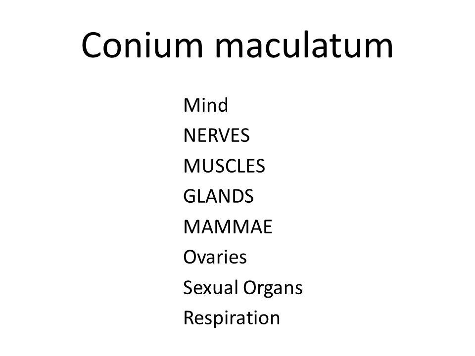 Conium maculatum Conium is an important remedy in chronic recreational drug users, not for the acute consequences of high doses of drugs, but for people who are more careful with drugs.