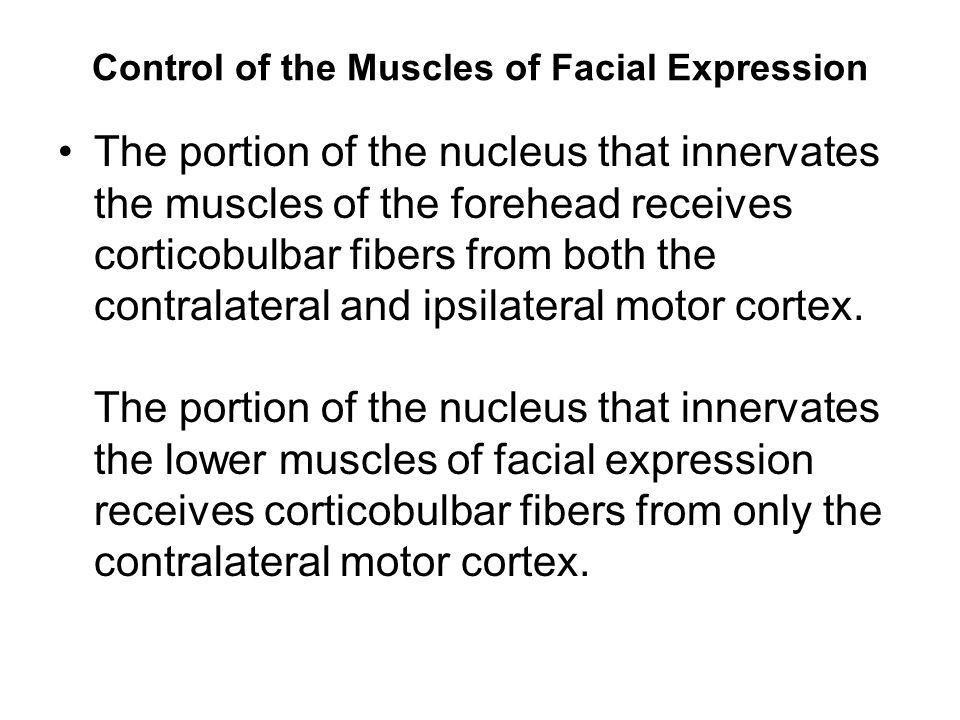 Control of the Muscles of Facial Expression The portion of the nucleus that innervates the muscles of the forehead receives corticobulbar fibers from